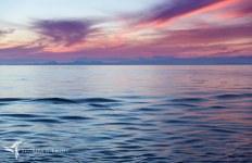S&L - South America - At Sea_Y9A3967